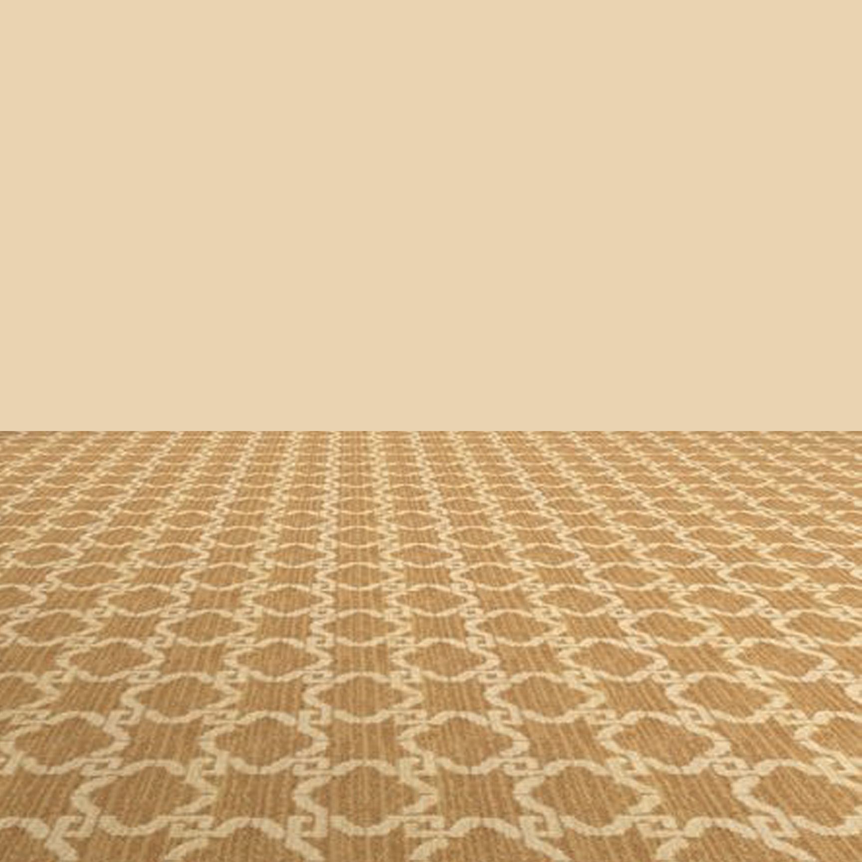carpet2.png