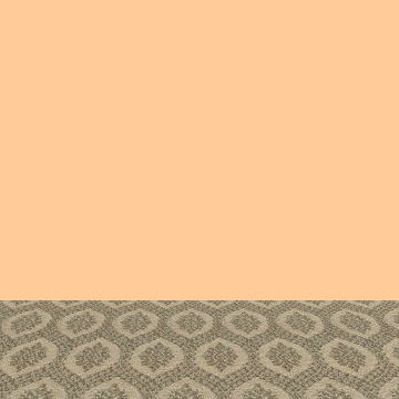 carpet4.png